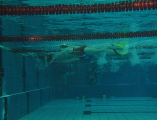 Starker Landkreis bei den DLRG Bezirksmeisterschaften im Rettungsschwimmen