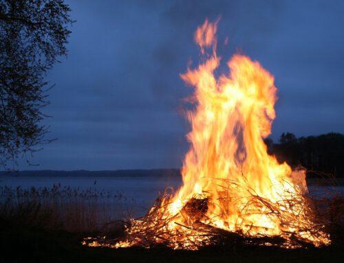 Mülltonnen in Schöningen und Lauingen brannten – Zeugen gesucht