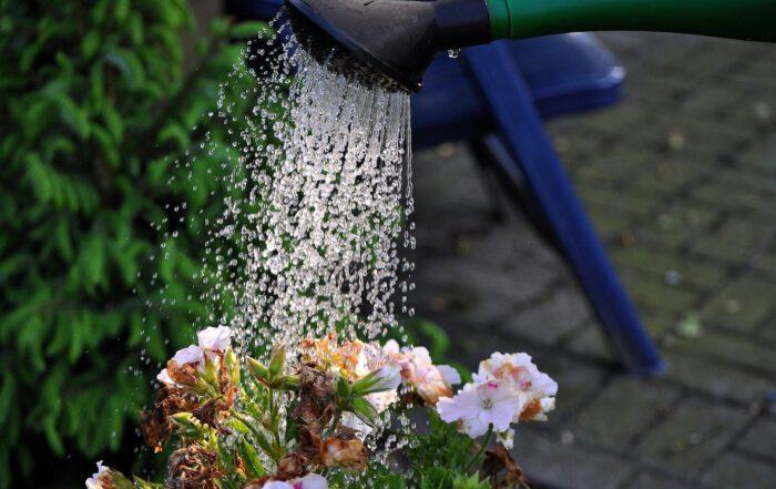 In der Urlaubszeit werden Aufgaben wie das Blumengießen oder das EntFleaexren des Briefkastens meist von den Nachbarn übernom- men. Doch wer muss für Schäden aufkommen, die durch solche Gefälligkeiten entstehen können? Foto: M.H./pixabay.de
